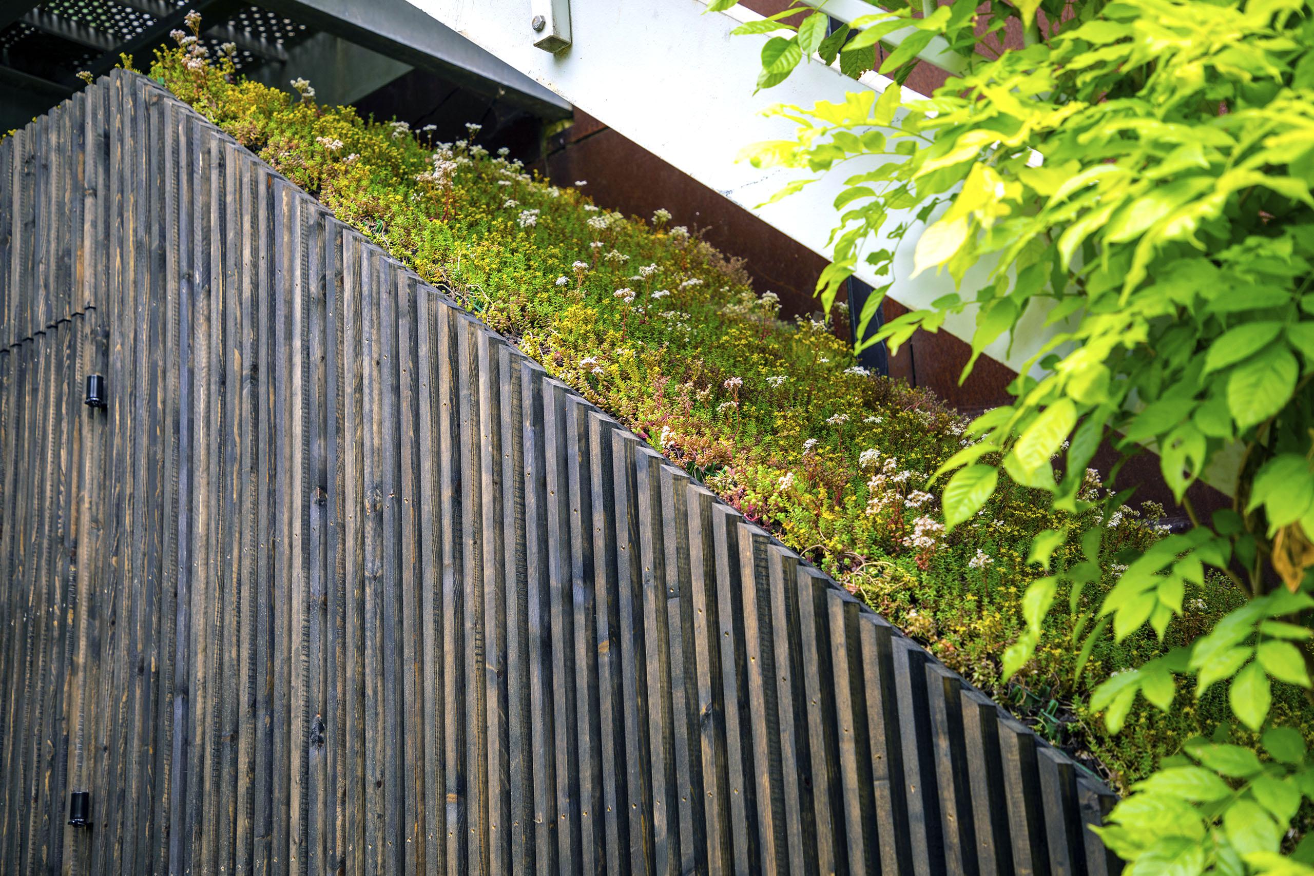 Eco-shed6